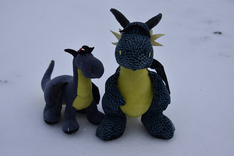 Kiwii und Luna zieht es in den Schnee