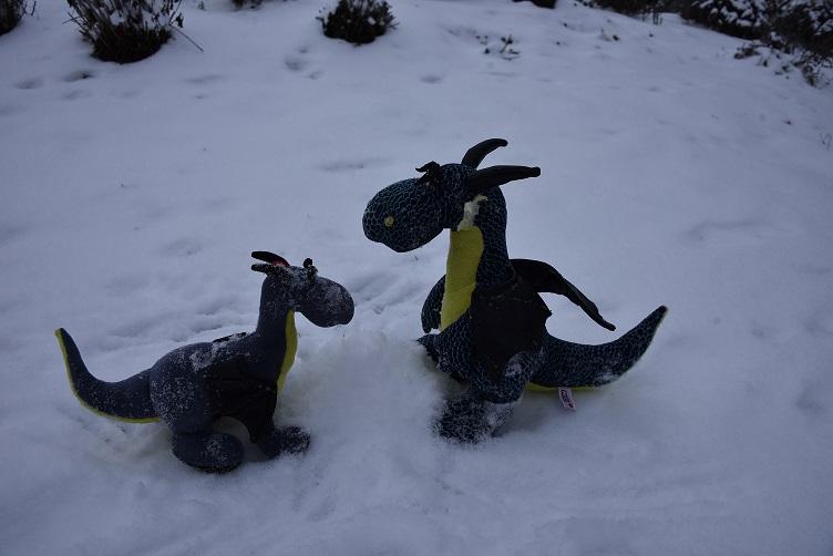 Kiwii und Luna wollen einen Schneedrachen bauen