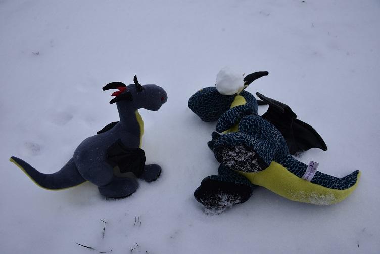 Kiwii wurde von einem Schneeball getroffen