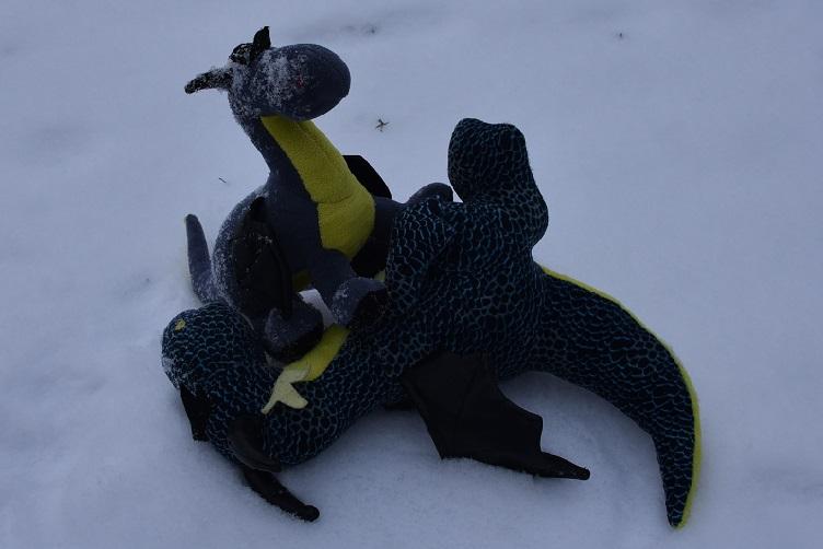 Kiwii und Luna toben im Schnee