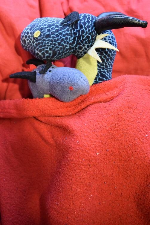 Kiwii und Luna kuscheln auf dem Sofa