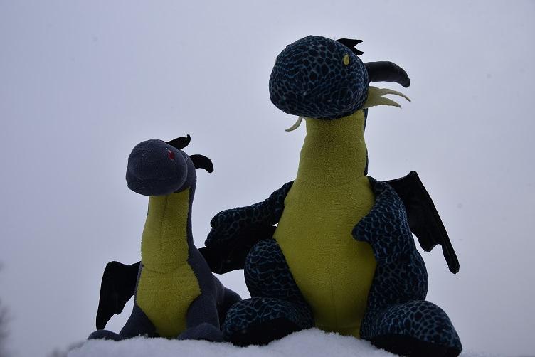 Kiwii und Luna lassen sich ein paar Schneeflocken um die Nasen wehen