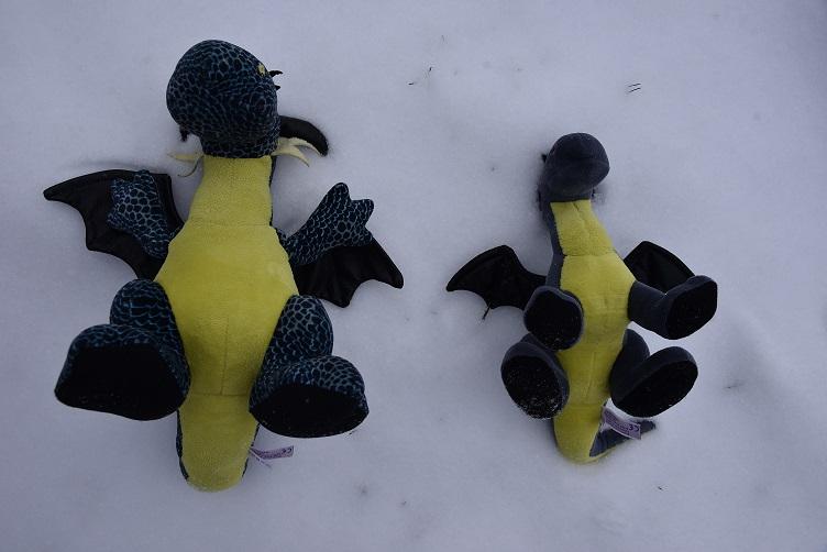 Kiwii und Luna versuchen Schneeengel zu machen