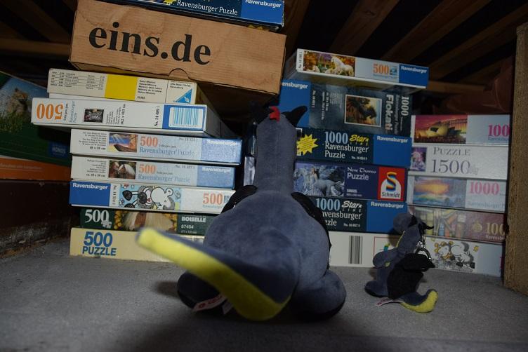 Lina und Luna holen die alten Puzzles unter dem Bett hervor
