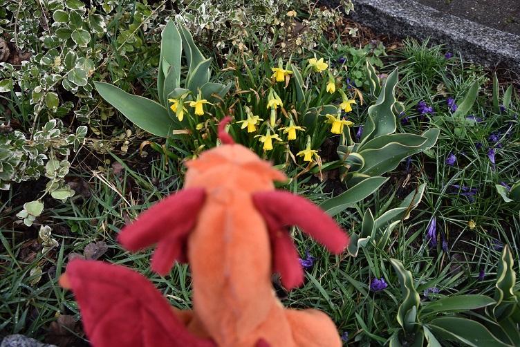 Paffina bewundert Blumen