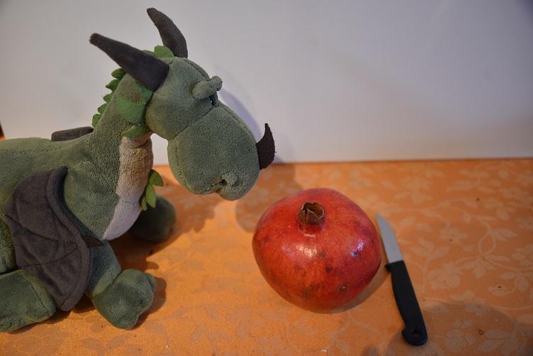 Grünling schaut den Granatapfel an