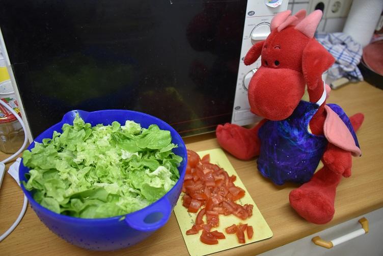 Rosa mit Salat
