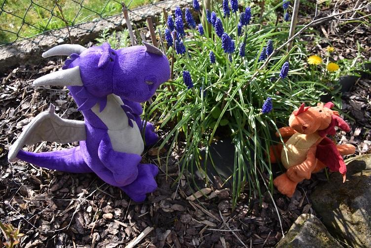 Paffina und Violetta bewundern violette Blumen
