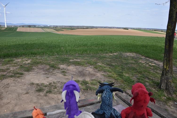 Drachen gucken auf ein anderes Feld