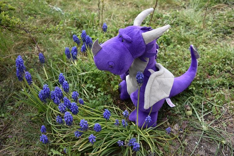 Violetta mit violetten Blumen