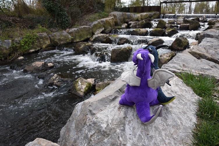 Violetta und Kiwii am Wasser