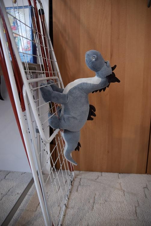 Sirius klettert am Wäscheständer hoch
