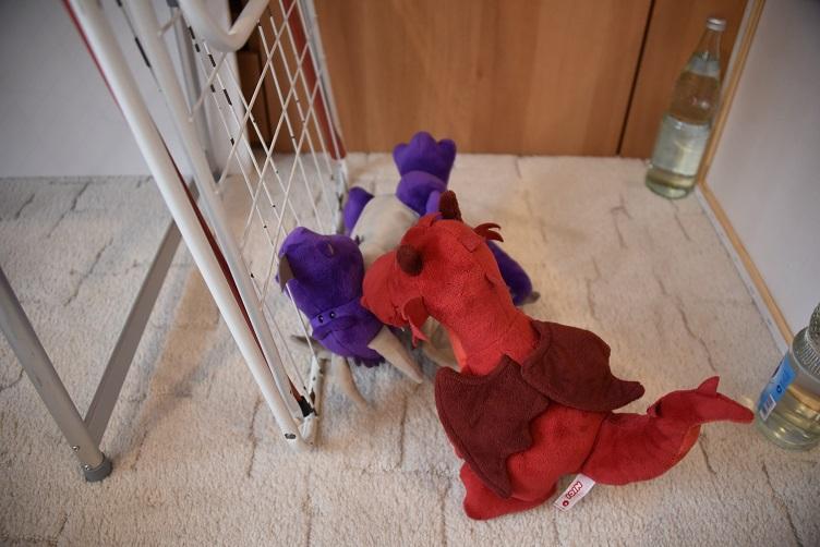 Ruby schaut nach Violetta