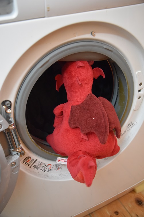 Ruby füllt die Waschmaschine