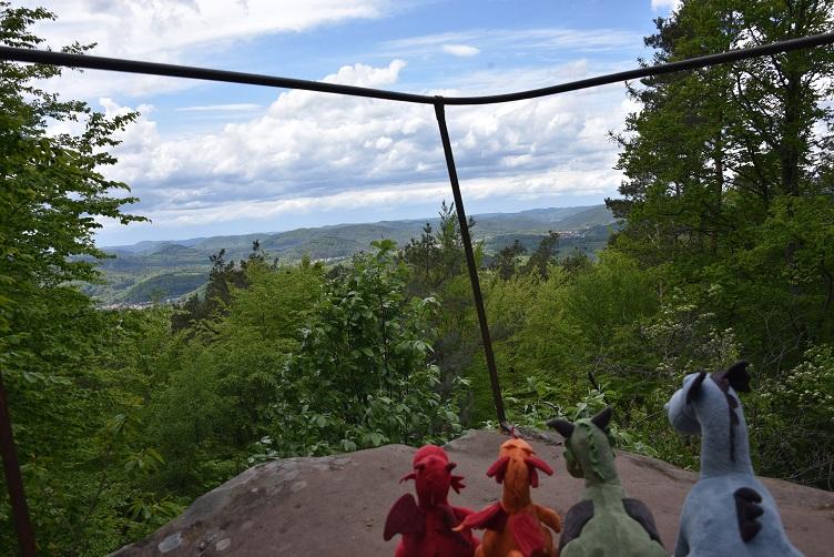 Die Drachen genießen die Aussicht