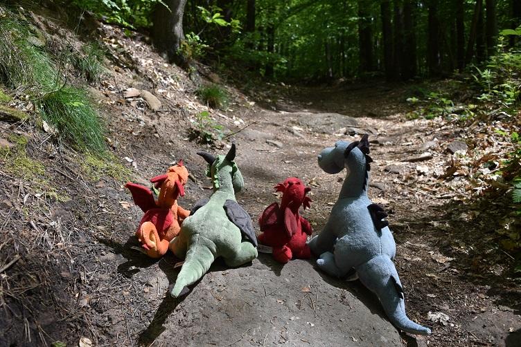Wandernde Drachen