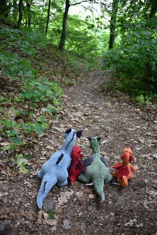 Die Drachen auf dem Rückweg