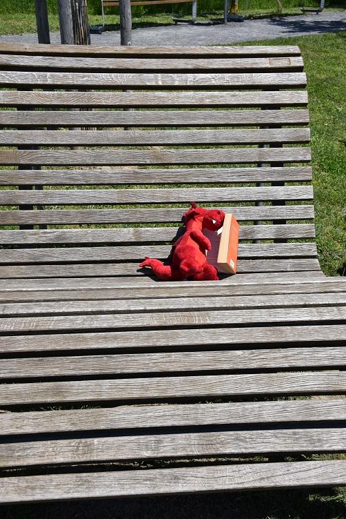 Ruby liegt auf der Sonnenliege und liest ein Buch