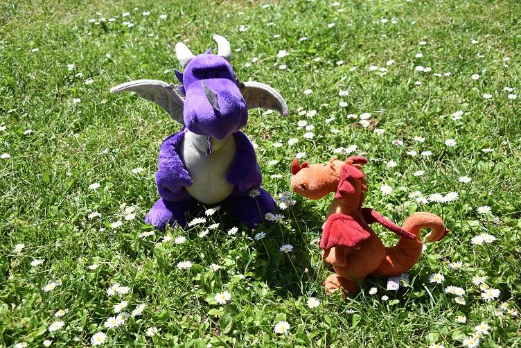 Violetta und Paffina bewundern Gänseblümchen