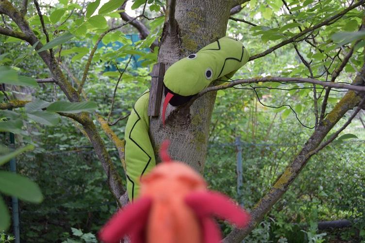 Paffina findet Alphabetty im Nussbaum