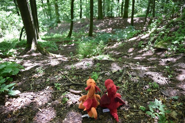 Paffina und Flämmchen schauen auf den steilen Weg abwärts