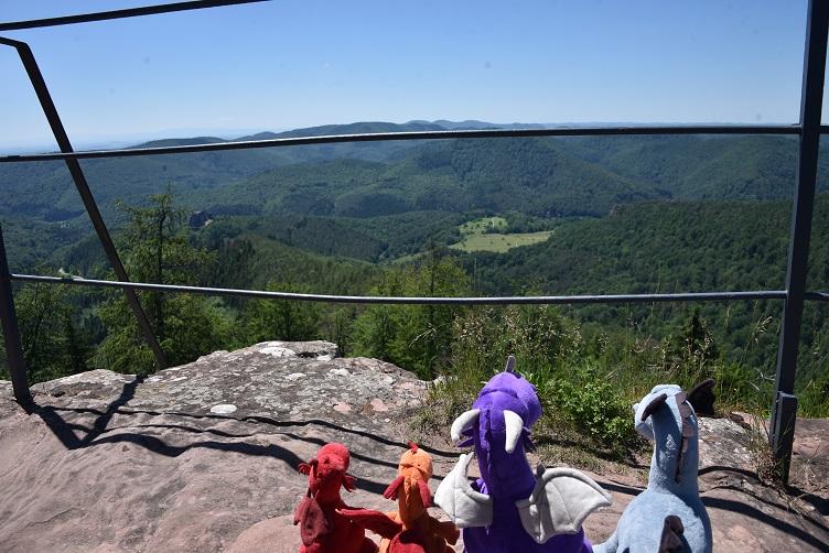 Die Drachen genießen die Aussicht vom Turm der Hohenburg