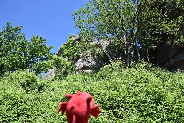 Flämmchens erster Blick auf Burg Löwenstein