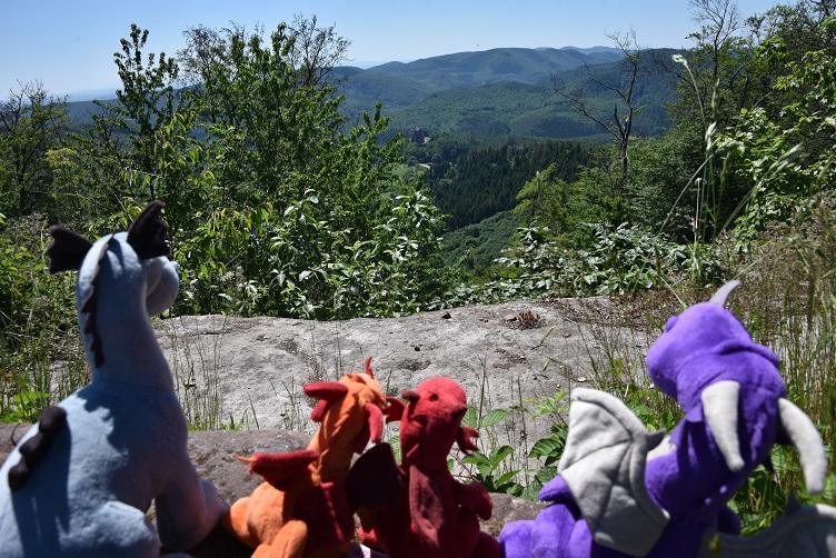 Aussicht von Burg Löwenstein