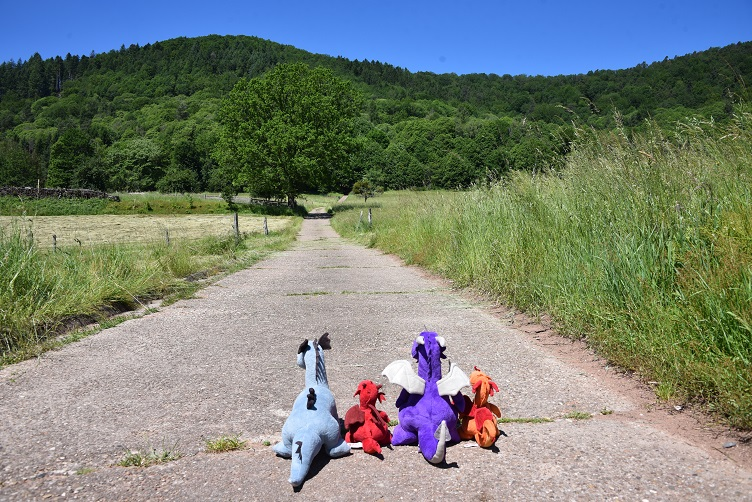 Drachen wandern zwischen Wiesen