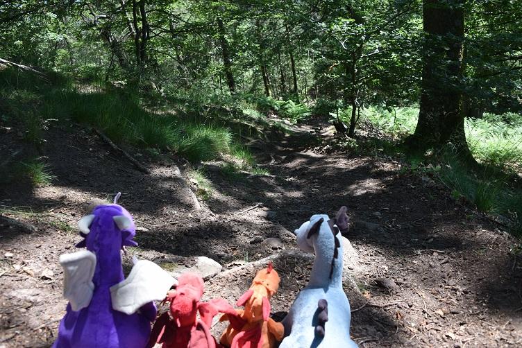 Die Drachen laufen einen steilen Trampelpfad bergab