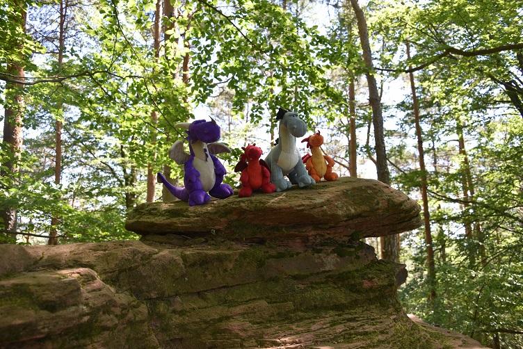 Die Drachen rasten auf einem Fels