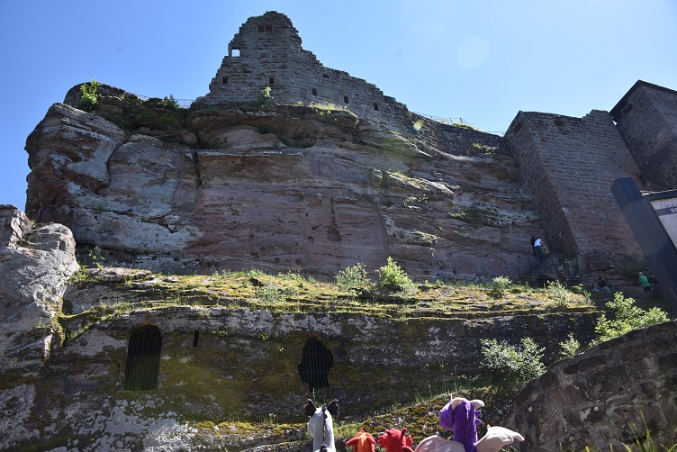 Die Dracheis am Fuße von Burg Fleckenstein
