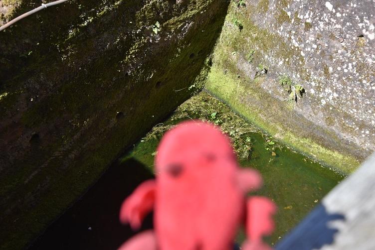 Flämmchen schaut in den Burggraben