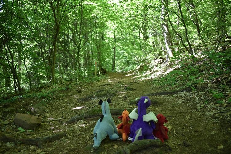 Drachen wandern im Wald