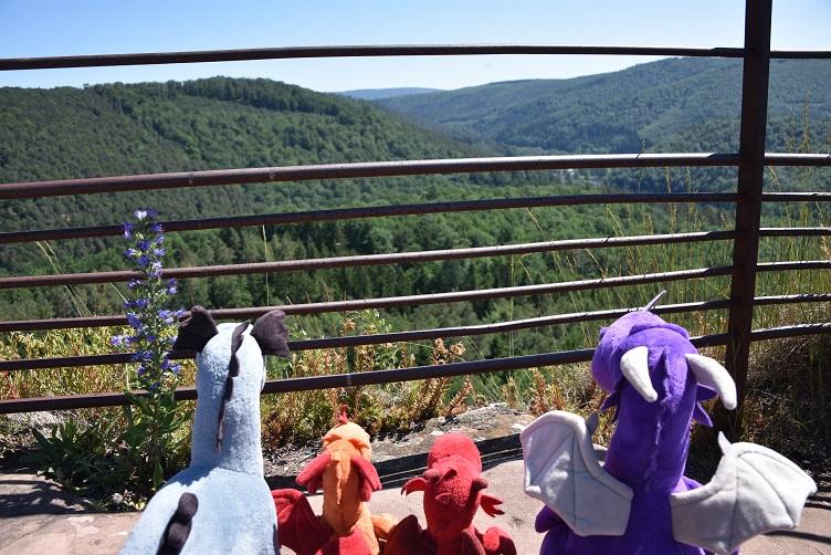 Aussicht vom höchsten Turm von Burg Fleckenstein