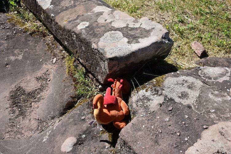 Paffina sucht den Schatz von Burg Fleckenstein