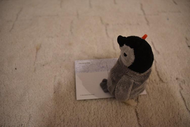 Pimmi schreibt eine Postkarte