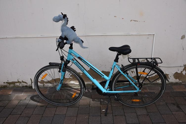 Sirius sitzt auf dem Fahrradlenker