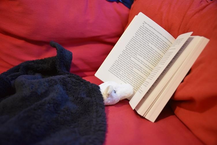 Frosty liest in eine Decke gewickelt ein Buch