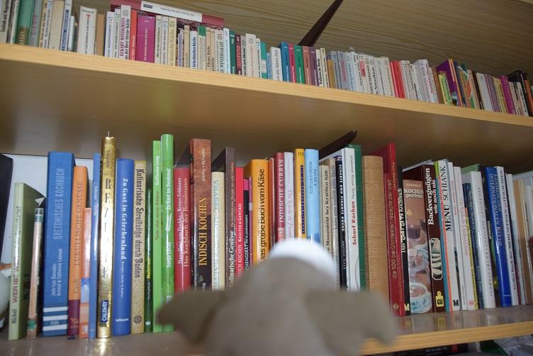 Frosty schaut das Bücherregal an