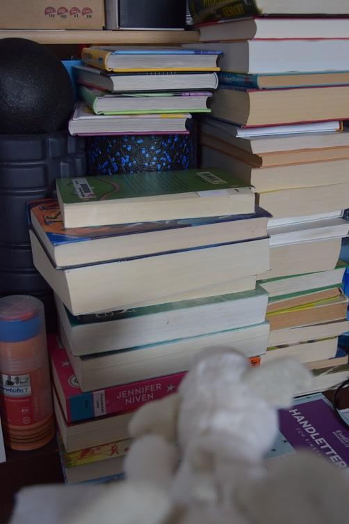 Frosty schaut einen Bücherstapel an