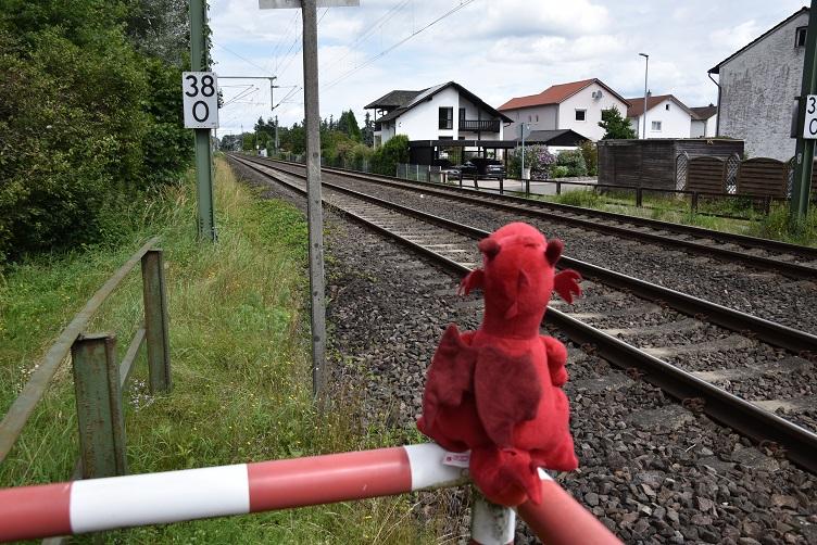 Ruby schaut an den Gleisen nach links