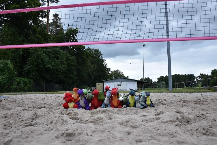 Die Drachis auf dem Beachvolleyballfeld