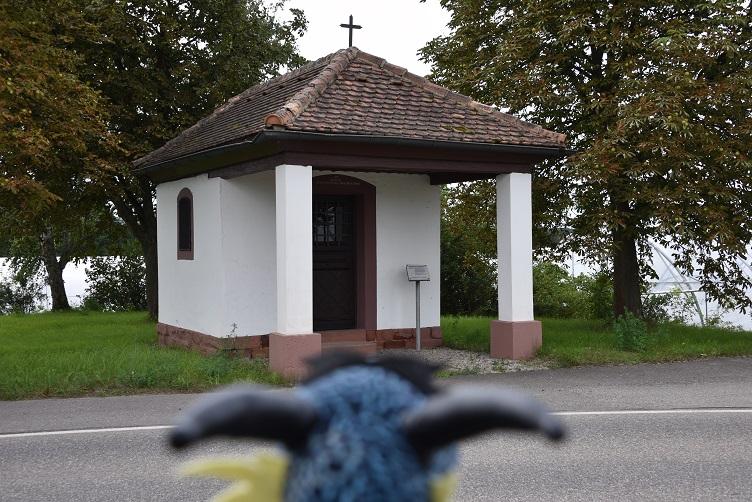 Kiwii und die Kapelle