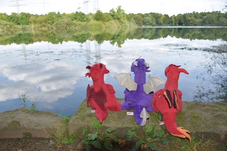 Ruby, Chilli und VIoletta am See