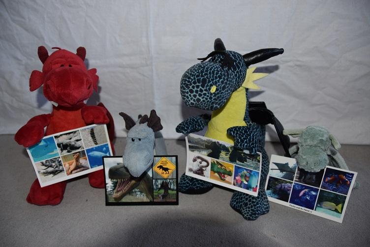 Drachis mit selbsterstellten Postkarten