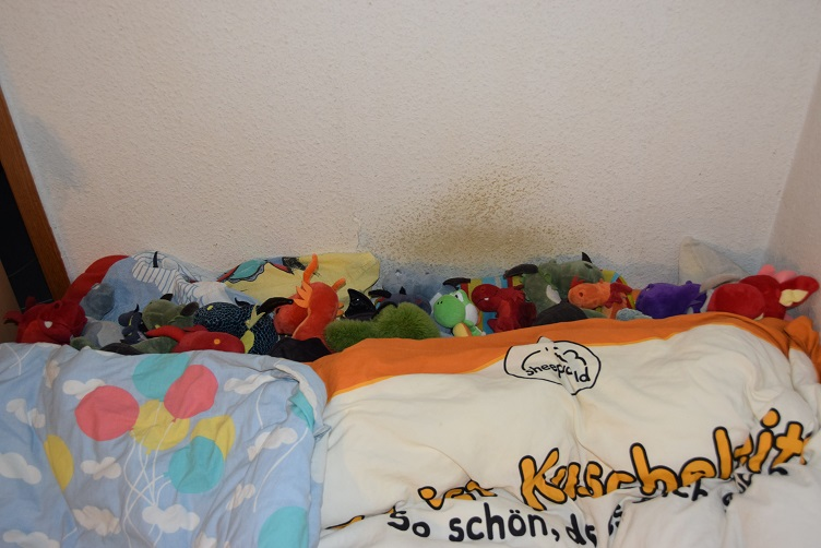Drachis kuscheln im Bett